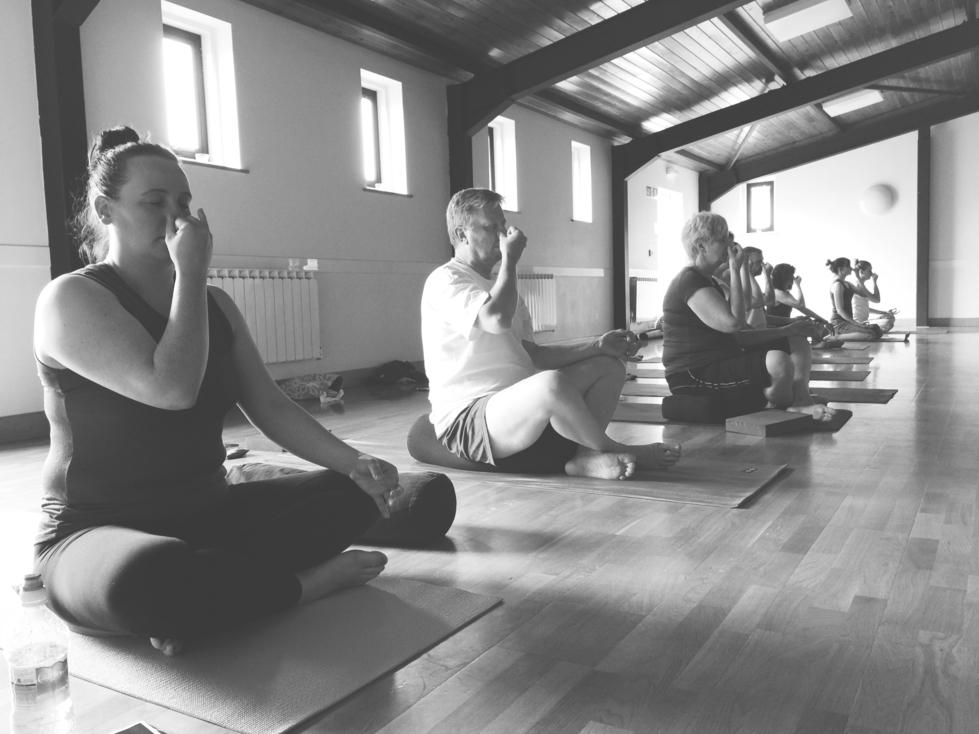 pty yoga foundation workshop 2