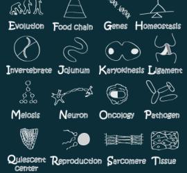 ABC of Biology