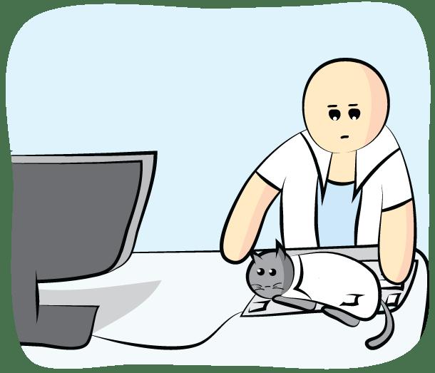 Science-Cat---Keyboard