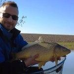 Carpe au feeder avec Goldfisch expériences