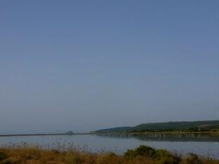 Ponds and Flamingos