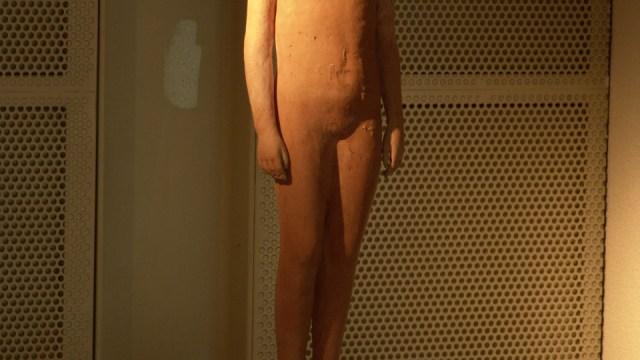 """Desnudo figura frontal"""