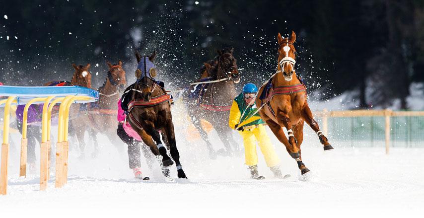 www.pegasebuzz.com | Publicité : Canon France - Ski-Joëring 2015