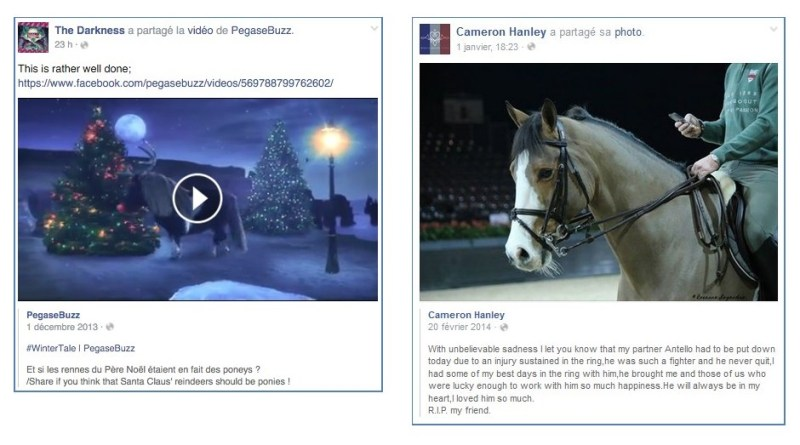 www.pegasebuzz.com | Antello Z and Cameron Hanley by Roxanne Legendre, Longines Masters Hong Kong