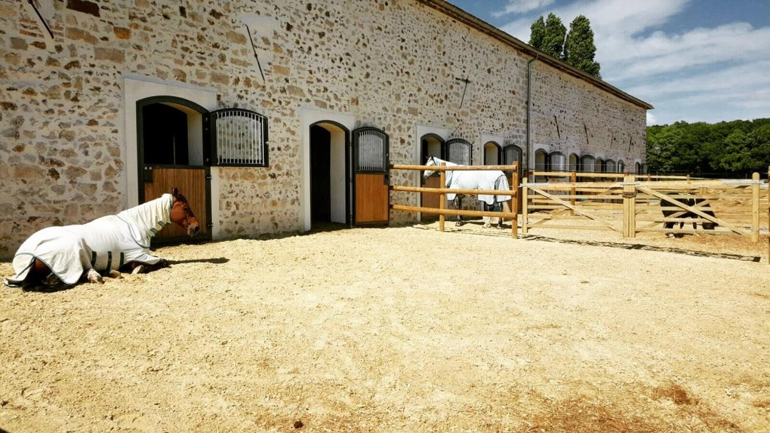 www.pegasebuzz.com | Dream barn : Equimov presents Haras de Pachavert