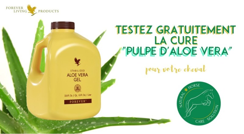 www.pegasebuzz.com | Natural Horse Care Solution : aloe vera pour chevaux