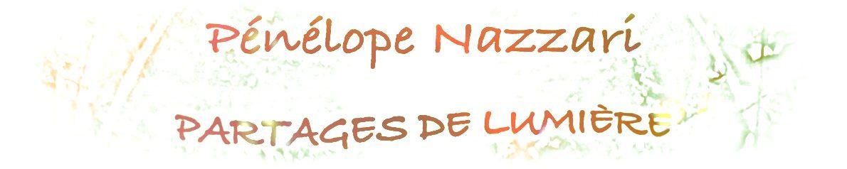 cropped-bandeau-haut-site-PN3-1.jpg