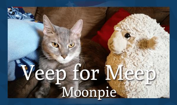 Veep for Meep: Moonpie