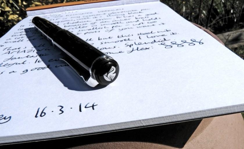Pelikan M215 fountain pen end on