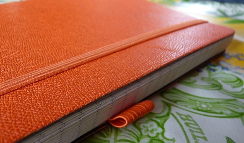 Papernotes notebook pen loop