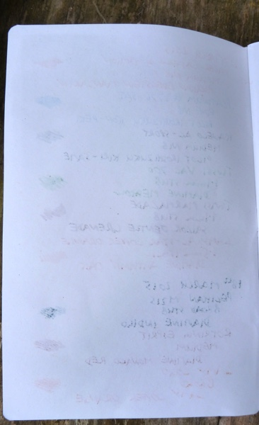 Furrow Book ink test back