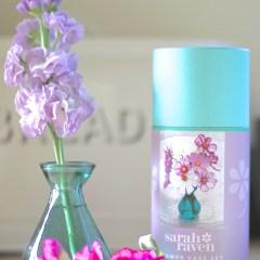 Sarah-Raven-Flower-Vase-Set
