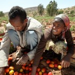 Photo of farmers in Ethiopia, courtesy of the World Bank