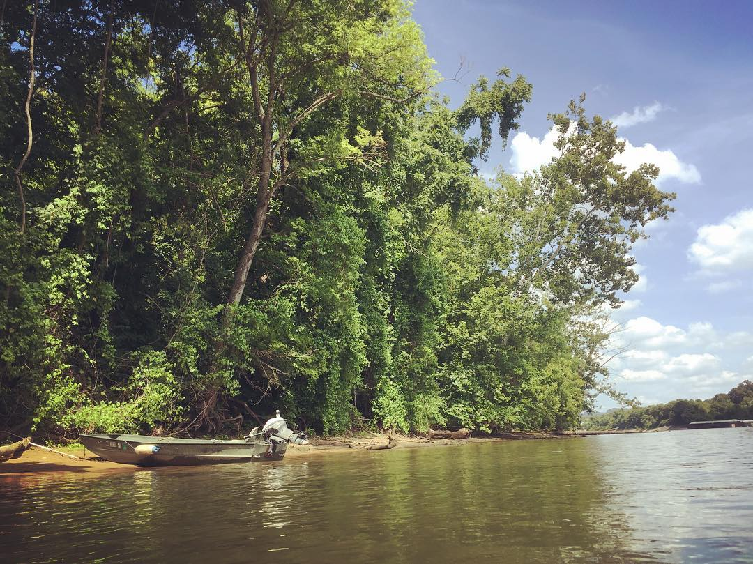 Maclellan Island, formerly known as Chattanooga Island, formerly known as Crutchfield Island, formerly known as Ross' Landing Island, and currently called Audubon Island in the middle of the river in downtown Chattanooga. What is the history here?