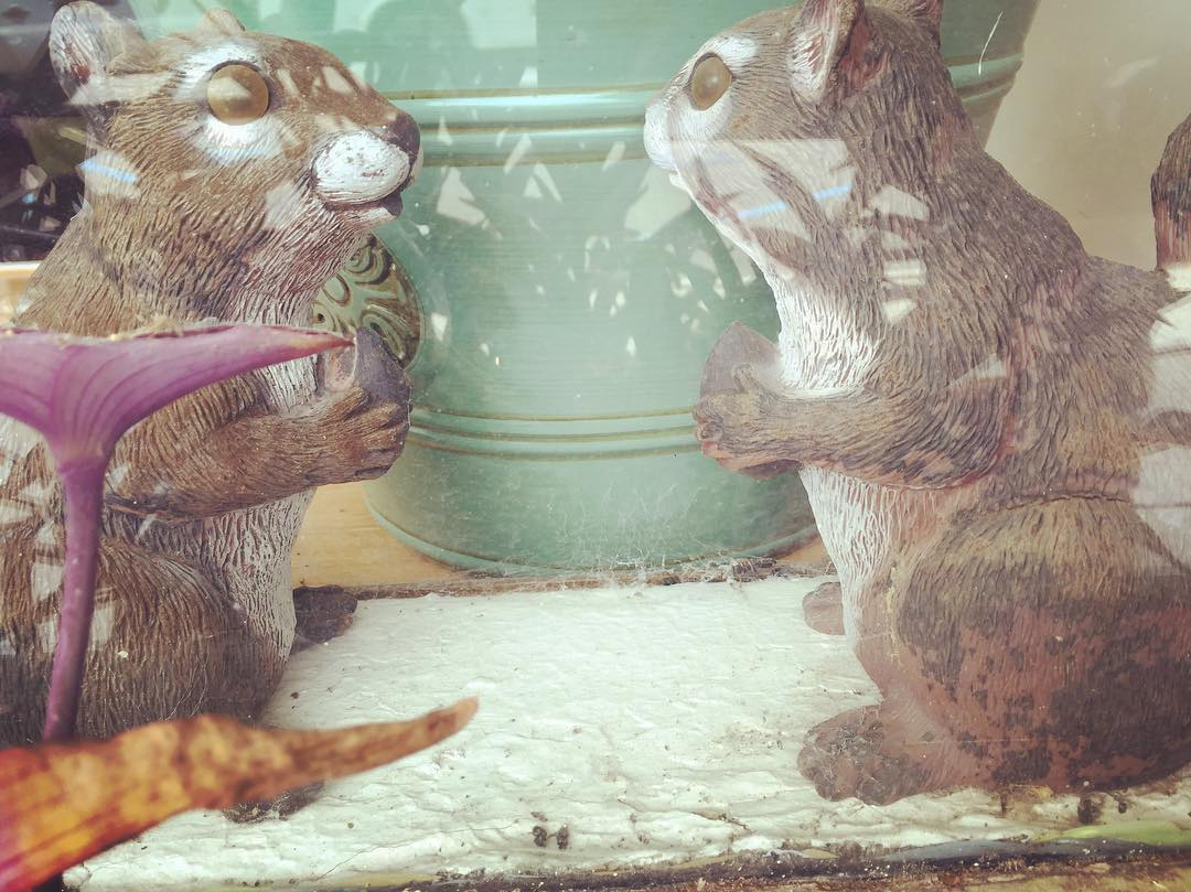 Old AA buddies of Squirlsy's modeling in Guntersville Alabama