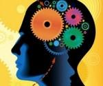 what-is-neuro-semantics-head-small