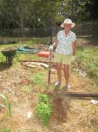 Jean walked up for a days gardening