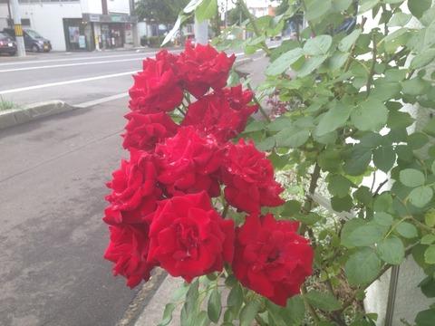 2014-08-05-16-53-52