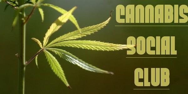 Cannabis-Social-Club