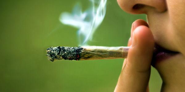 cannabis jovenes