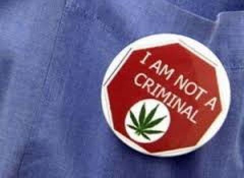 marihuana regulacio
