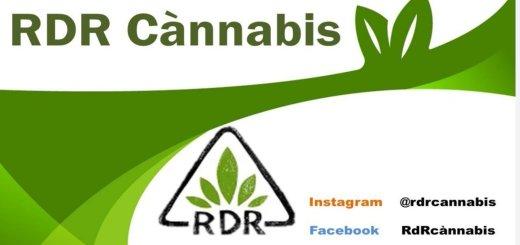 rdr cannabis