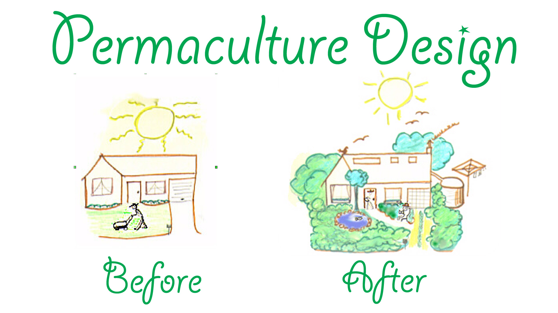 before and after permaculture design