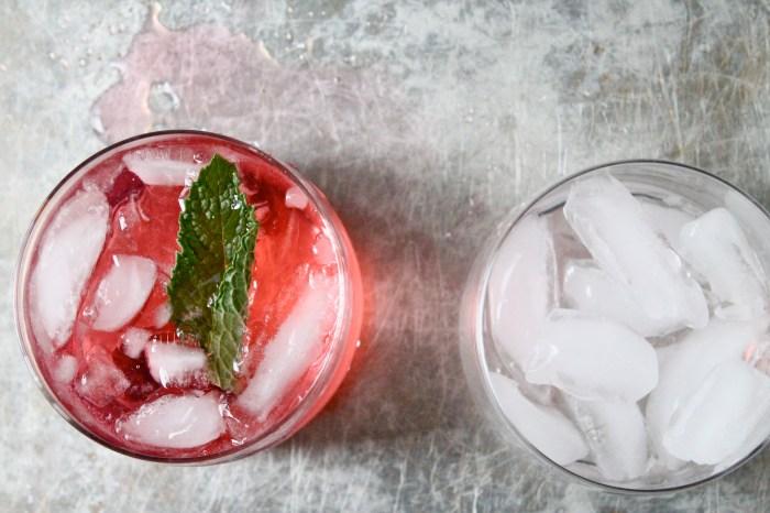 gin soda 2