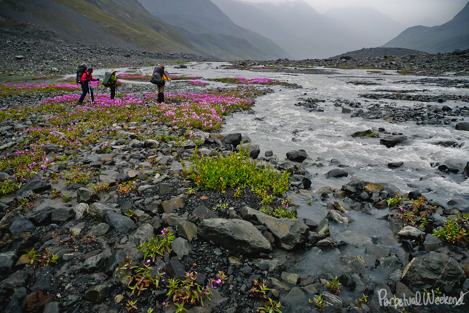 Rainy day stream crossing in Wrangell St Elias