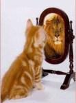 L'effet miroir chez le pervers narcissique
