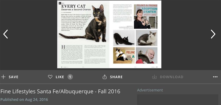 Cat photographs published in Fine Lifestyles Santa Fe magazine