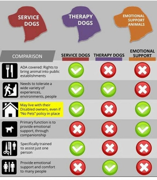 chart shows service dog vs. therapy emotional support dog