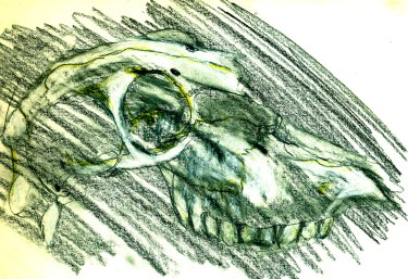 Peter Bright - Artist