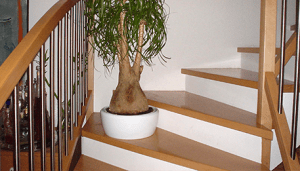 What Are The Different Types Of Stair Treads?