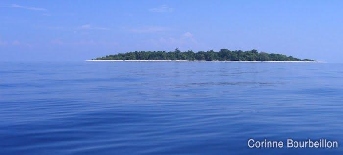 Sangalaki vue du large. (Bornéo, Indonésie)