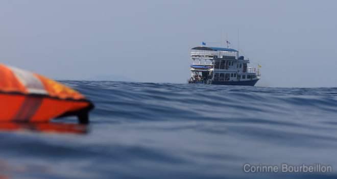 Sea of Fantasy. Février 2011. Croisière-plongée Similan, Thaïlande.