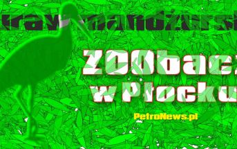 Żuraw Zoobacz