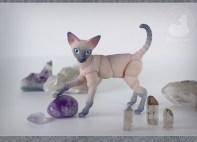 cats_stones_02