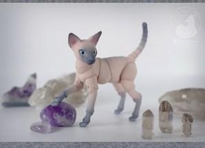cats_stones_03