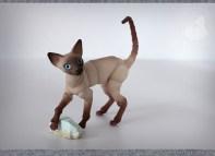 cats_stones_12