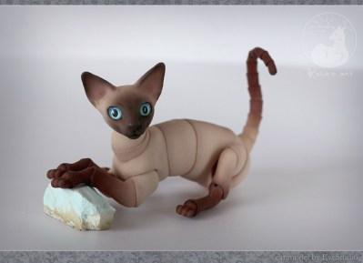 cats_stones_14