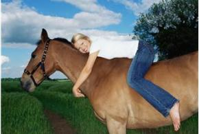 Understanding Horses: Watching For The Danger Signs