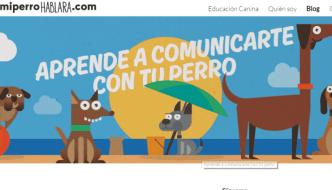 11 Blogs de Adiestramiento Canino que Tienes que Leer Ahora Mismo!