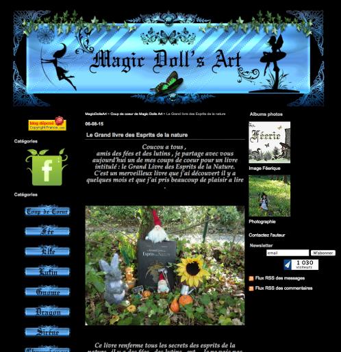 Magic Doll's Art