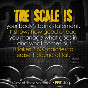 the scale