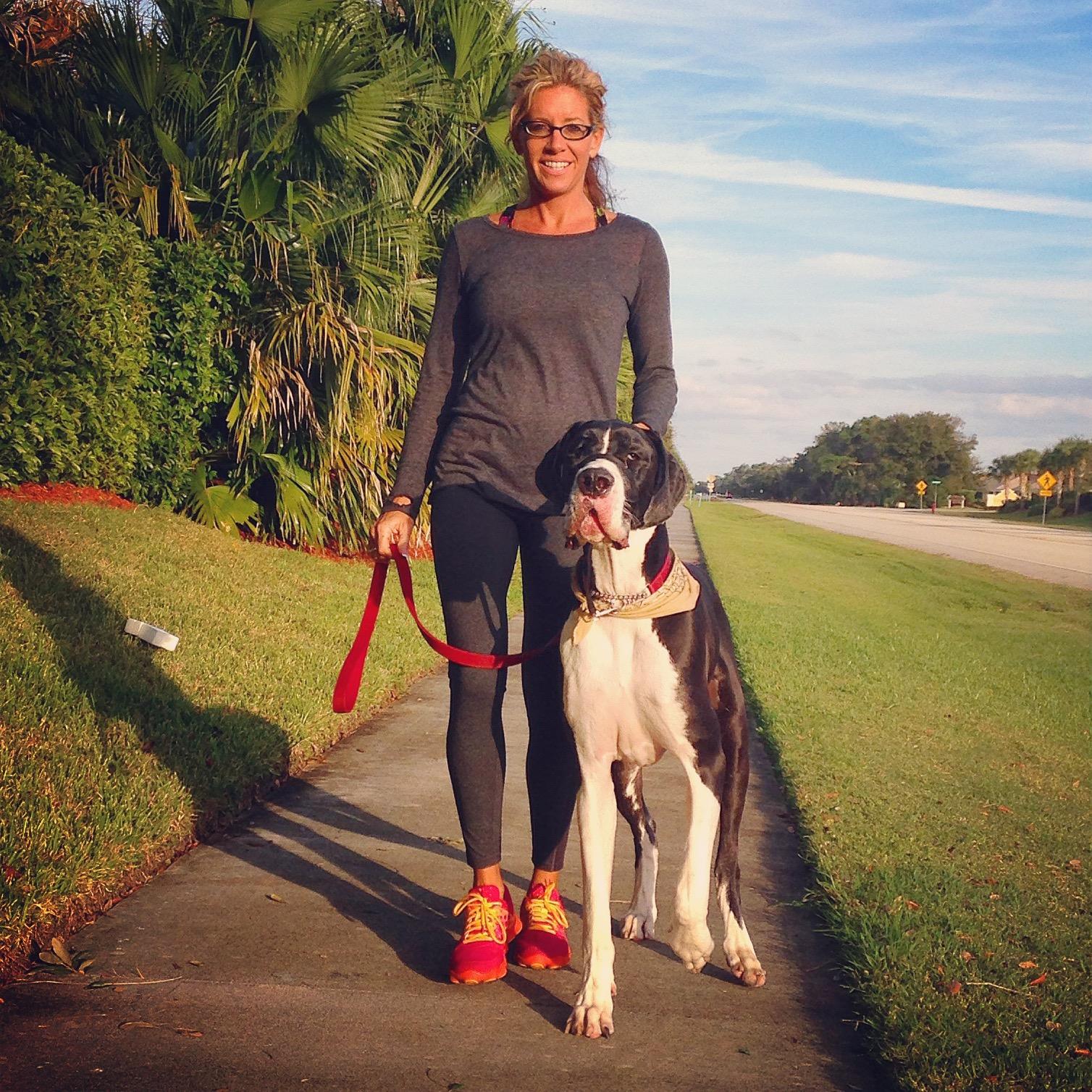 Dog Can T Walk Dog Stiffens