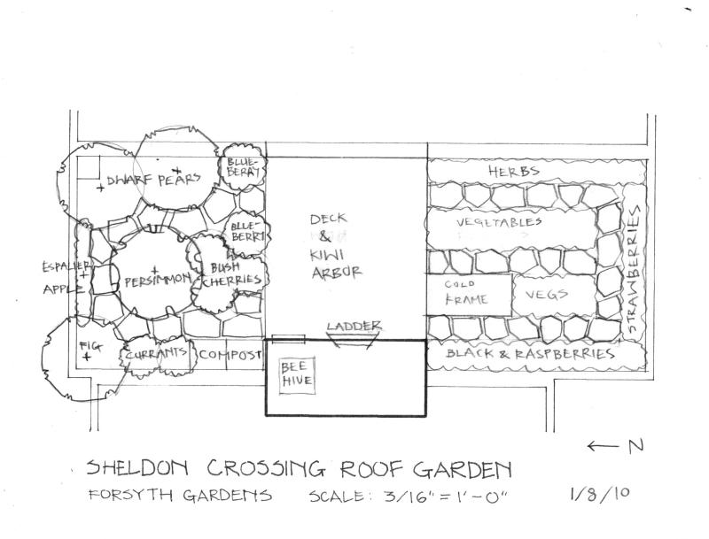 Large Of Simple Landscape Plan