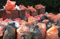 Московские депутаты оставили волонтерам мусор и ветеранов