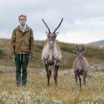 Philip kanwischer photography Sweden taking a stand reindeer caribou