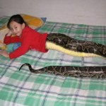 Thailand's Snake Girl: Mai Li Fay Photo Gone Viral
